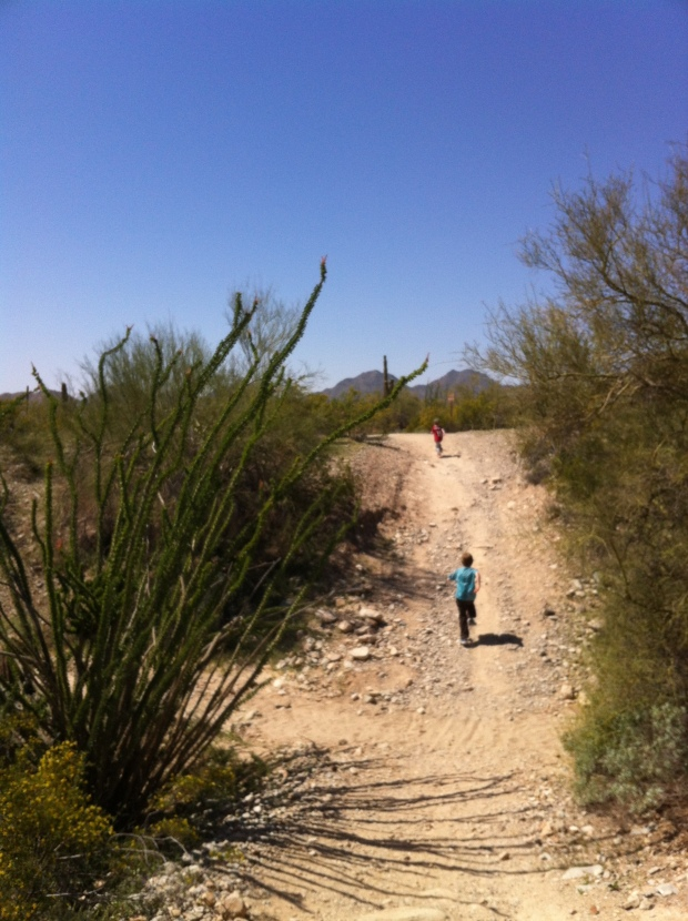 The trail has lots of dips and gullys bisected with sandy washes, it is a fun place to run