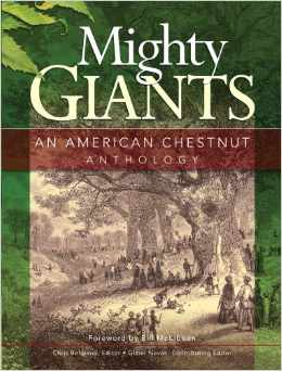mighty giants
